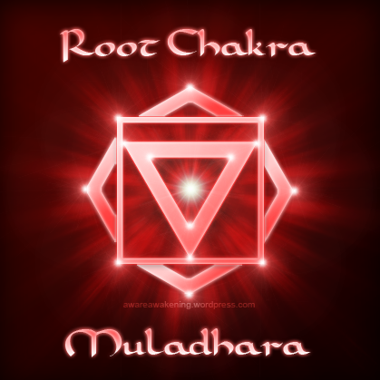 The Root Chakra Muladhara on where are your adrenal glands located